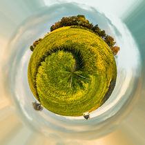 Bubenhäuser Höhe (1) - Little Planet von Erhard Hess