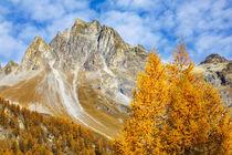 Herbstleuchten in der Schweiz von moqui