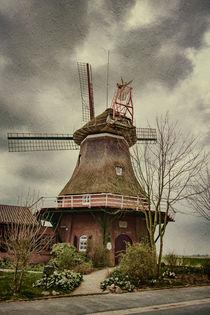 Stumpenser Mühle im Wangerland  von Nicole Frischlich