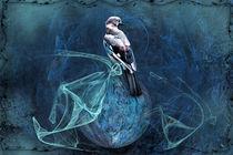 Blick ins Blaue by garrulus-glandarius