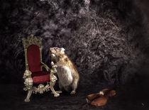Wenn ich König wär' ... by garrulus-glandarius
