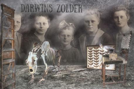 Darwins-dachboden-2