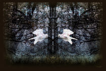Gefangen im Wald von garrulus-glandarius