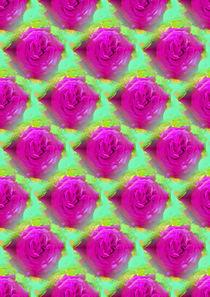 Rosenfeld pink von mala-b