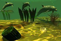 dolphins under water von kunstmarketing