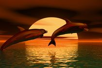 dolphins before sunset by kunstmarketing