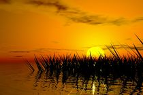 landscape in sunset von kunstmarketing
