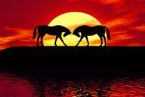 two horses before sunset von kunstmarketing