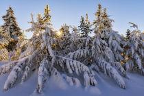 Winter im Erzgebirge von moqui