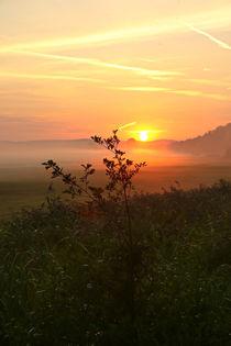 'Sonnenaufgang in der Natur' von Bernhard Kaiser