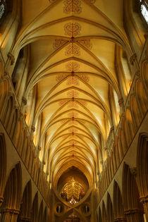 Kathedrale von Wells, Langschiff von Sabine Radtke