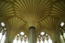 Kathedrale von Wells, Kapitelhaus von Sabine Radtke