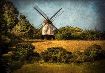 Cobstone Windmill Above Turville von Ian Lewis