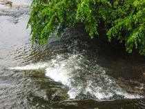 Rushing Waters by Dawn Siegler