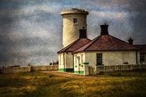 Nash Point Lighthouse Low Tower von Ian Lewis