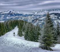 Z Gesiej Szyji, High Tatras, Poland by Tomas Gregor