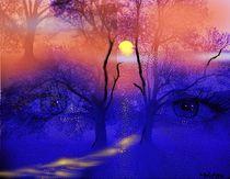 Augen der Nacht von Helmut Witkowitsch