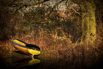 Yellow Rowing Boat by Ian Lewis
