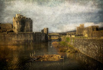 Inner Moat At Caerphilly Castle von Ian Lewis