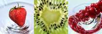 Früchte-Makro, Erdbeere, Kiwi und Johannisbeere, fruits by Dagmar Laimgruber