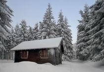 Holzhaus im verschneiten Wald by micha-trillhaase-fotografie