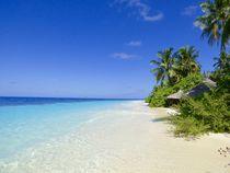 Paradise Island  von Annika  Leichtweiss