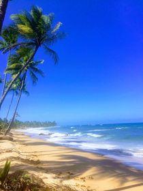 Taipu de Fora Beach by izaura mourao