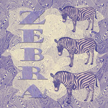 Zebra von Chris Berger