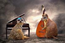 Hot Jazz Trio by garrulus-glandarius