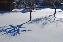 Oberammergau im Winter... von loewenherz-artwork