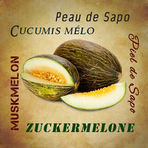 Die Zuckermelone - The sugar melon von Thomas Klee