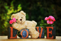 Love Teddy by Claudia Evans