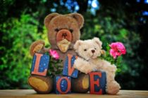 Love Teddybears with flower by Claudia Evans