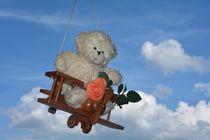 Fly. . . . . Teddy. . . . . fly!  von Claudia Evans
