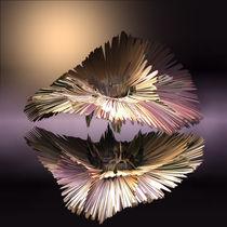 Spiegeldimension by Susanne Schönberger