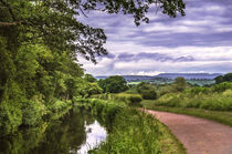 The Canal at Brecon von Ian Lewis
