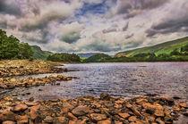 Thirlmere Looking North von Ian Lewis