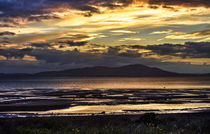 Evening Light Over The Solway Firth von Ian Lewis
