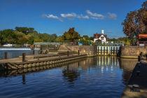 Autumn At Goring Lock by Ian Lewis