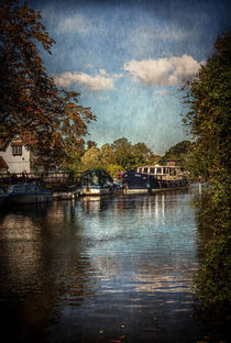 Above The Mill At Goring by Ian Lewis