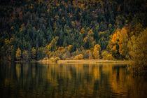 Herbst am Weißensee bei Füssen - Ostallgäu von Christine Horn