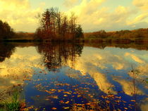 Calm moment in autumn by salogwynfineart