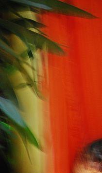 green leaves... by loewenherz-artwork