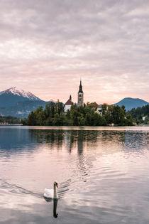 Bleder See mit Schwan von Florian Westermann