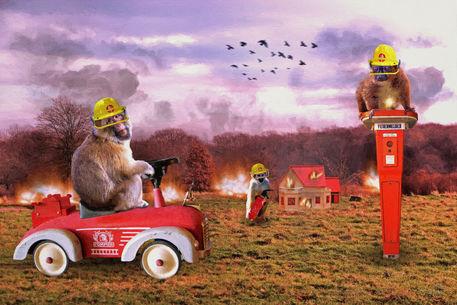 Firefighter-ol