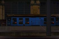 Der blaue Zug von Bastian  Kienitz