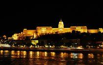 Budapest castle  by Anna Zamorska