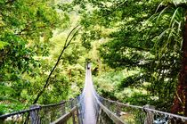 Rope bridge in New Zealand von Anna Zamorska