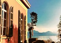 Blick zum Genfer See von Ditmar Brandt