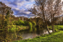 The River Kennet At Burghfield von Ian Lewis